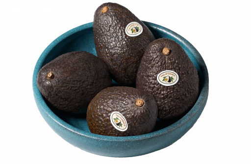 avocado-transparent-2.png
